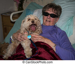 Elderly woman in rest home with dog - Senior woman...