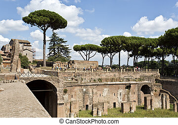 Palatine Hill Ruins - Ruins of the emperors palaces on...
