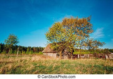 Russian Wooden Village House In Russia In Summer, Spring...