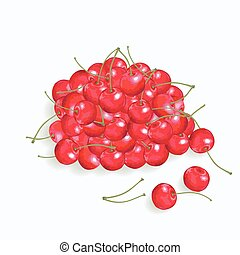 red cherry on the  white background