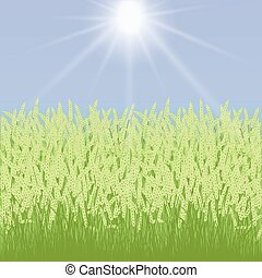 card with grass and spikelets