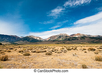 sierra mountains with dry meadow in foreground, nevada, usa