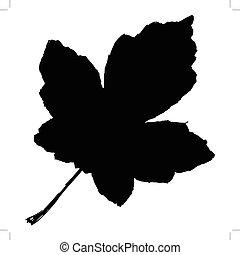 maple leaf - black silhouette of maple leaf