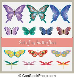 14 colorful butterfly set Vector illustration