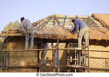 Thatchers laying a grass roof - Muldersdrift, South Africa...