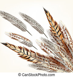 Feathers vector background - Background with vector...