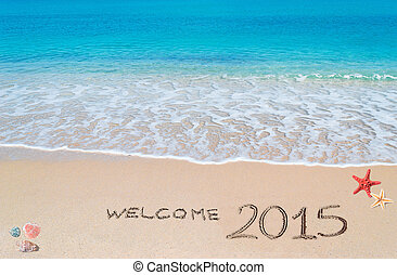 welcome 2015 - turquoise water and golden sand with shells...