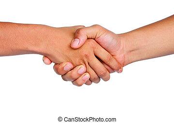 shake hand on isolated background