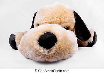 Cuddly Toy Dog - A view of a cuddly soft toy dog, on a white...