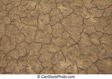Dry Mud Cracks