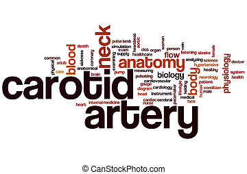 Carotid artery word cloud concept with anatomy neck related...
