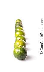 Calamondin Or Calamansi Lime - Calamondin or calamansi lime...