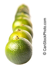 Calamondin Or Calamansi Lime - Calamondin or calamansi lime...