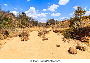 Dry riverbed landscape on a warm sunny day in Africa