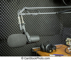 Dynamic microphone in recording studio - Professional...