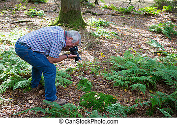 Senior man photographing forest life - Senior man in an...