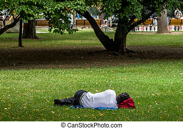man sleeping in the park - man sleeping in a park in linz,...