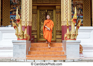 Young Buddhist Monk Walking In Front Of Monastery - Young...