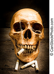 Skull with cigarettes, still life. - Skull with cigarettes,...