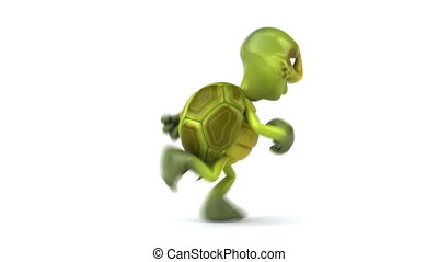 Fun turtle running