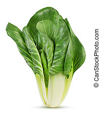 swiss chard - fresh swiss chard isolated on white background