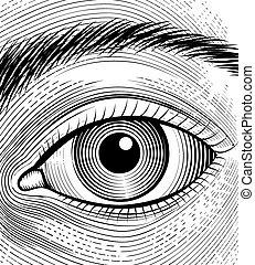 Engraving human eye. Sketch eyes closeup on a white...