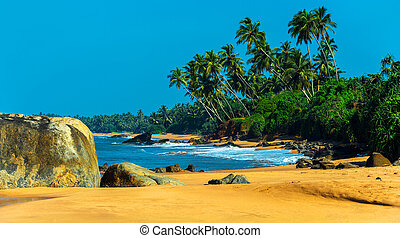 Sri Lanka - Ocean coast of Sri Lanka in the tropics