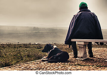 Shepherd and sheepdog - Shepherd and Laying sheepdog border...