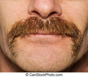 Movember Mustache - close up of mans face with one month old...