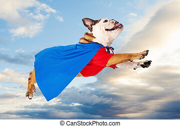 Superhero Dog Flying Through Clouds - A funny Bulldog...