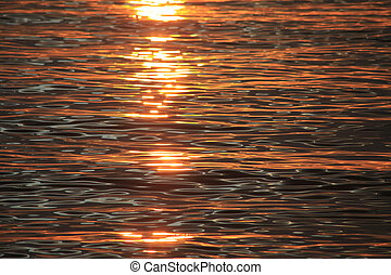 the water at sunset
