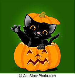 Cat in pumpkin - Black kitten jumping out from a Halloween...