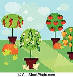 vegetables garden - Is a EPS 10 Illustrator file