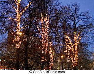 christmas illumination on urban trees in winter