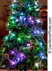 electric lights on Christmas tree outdoors