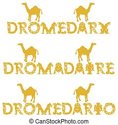 text dromedary in 3 languages