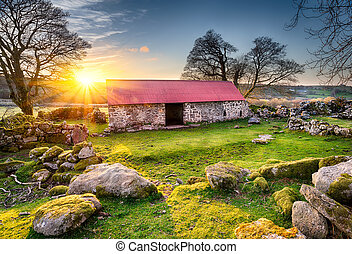Old Barn at Sunset - Old barn or croft with a red tin roof...