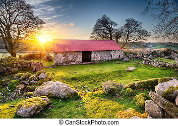 Old Barn at Sunset - Old barn with a red tin roof at...