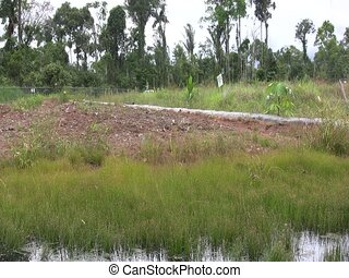 Bioremediation pit for soil contaminated with crude oil - On...