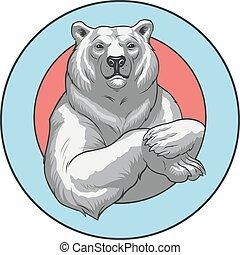 white bear - Vector illustration of a polar White bear