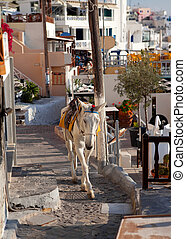 Donkeys waiting passengers at the port of Fira Santorini...