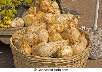 Coconuts for puja - Sale of coconuts for Hindu puja or...