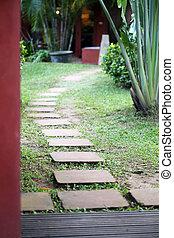 tropical Garden - Tropical garden in the jungle in Thailand