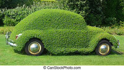Environmental Conservation - Green Grass on the Auto