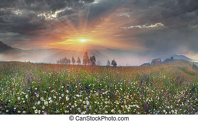 panorama of mountain meadows in Transcarpathia - Beauty...