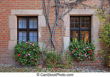 House windows with flowers, vines and brick wall in...