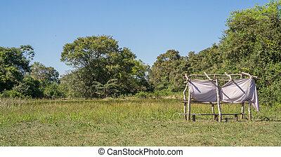hidden hut for bird watching in pantanal, Brazil - View of...