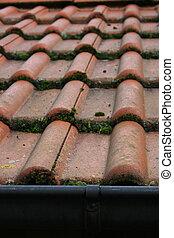 red tiles - Tile roof covered with red tiles, overgrown with...