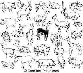 Wild Animals Zoo Set Hand-drawn Vector illustration Isolated...