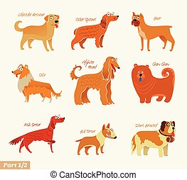Dog breeds. Bull Terrier, Chow Chow, Collie, Saint Bernard,...